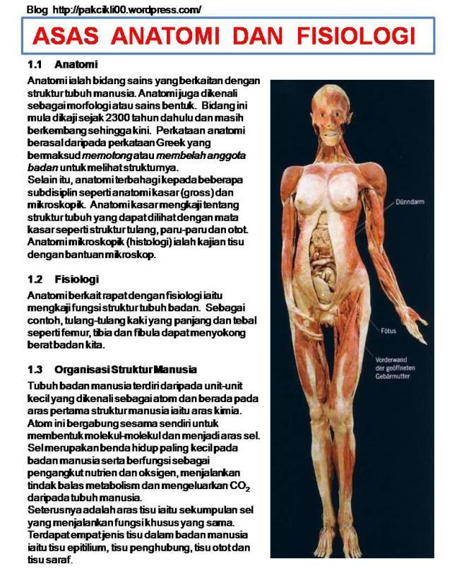 asas anatomi dan fisiologi