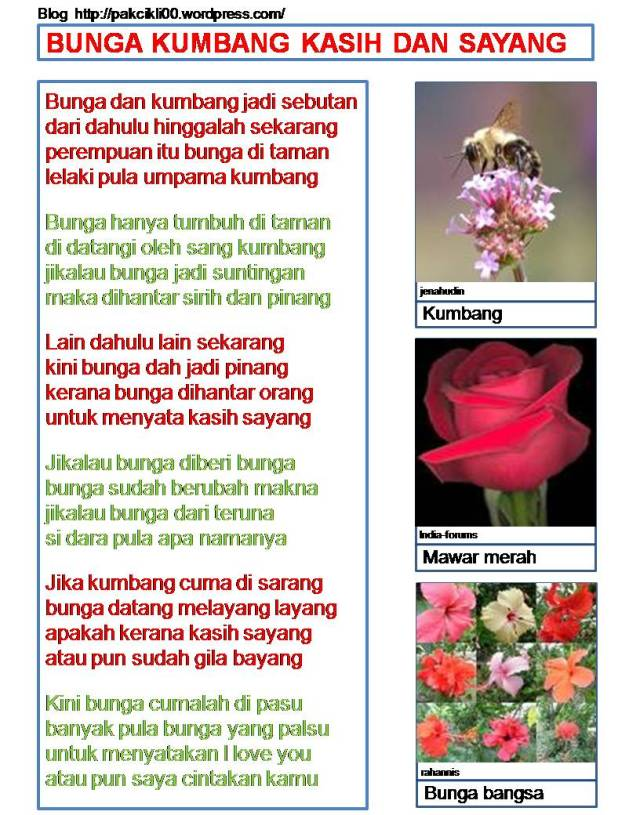 bunga kumbang kasih dan sayang