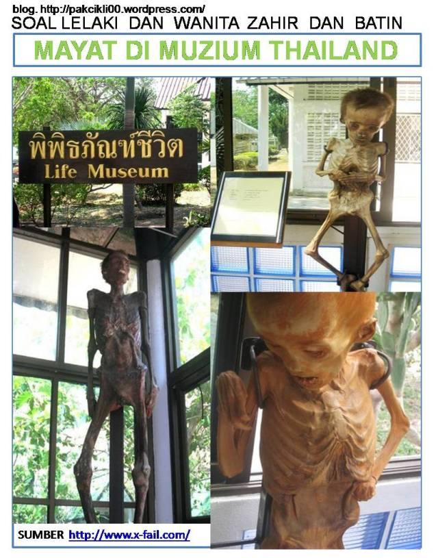 mayat di muzium Thailand
